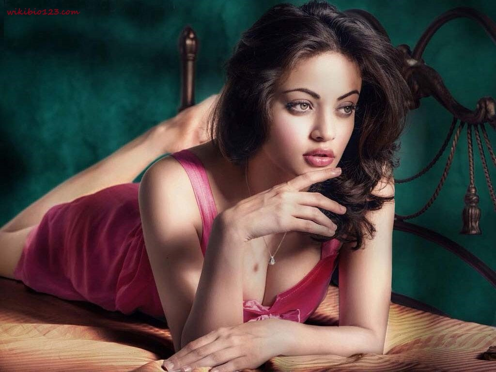 Sneha Ullal wiki Bio Age Figure size Height HD Images Wallpapers Download