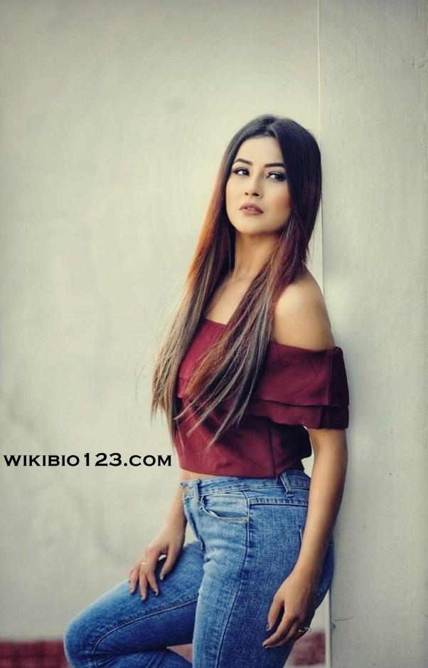 Shehnaaz Kaur Gill Wiki Bio Age Figure Size Height Hobbies Friends HD Images Wallpapers